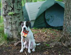 Nutri-Cuppa camping companion