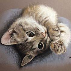 Вирджиния Агниэль (@lespastelsdevir) | Фотографии и видеоролики Instagram #CatDrawing
