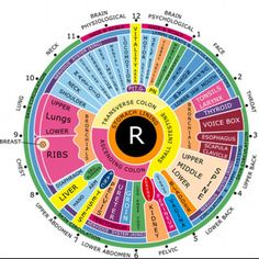 Iridology - right eye
