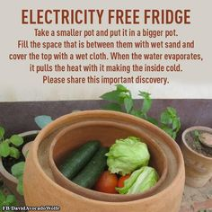 Here is how to make your own electricity free fridge. Survival Life, Survival Prepping, Emergency Preparedness, Survival Hacks, Wilderness Survival, Survival Skills, Home Remedies, Natural Remedies, Vegetables For Babies
