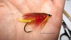 Tying the Col. Blyth (12th Lancers Salmon Fly) with Davie McPhail