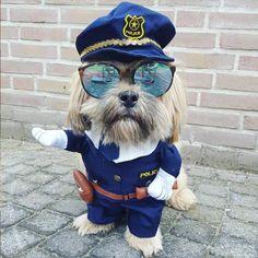 Cute Dark Blue police Dogs Coat