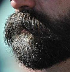 Beard No Mustache, Moustache, Bald With Beard, Beard Love, Beard Images, Scruffy Men, Men Beard, Beard Growth, Moustaches