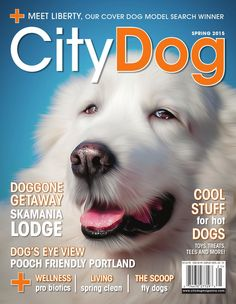 CityDog Magazine Spring 2015 Issue  Smart, city-savvy and fun, CityDog brings the joys of life with our four-legged friends to dog lovers throughout the West — Seattle, Portland, San Francisco — and everywhere in between. Each quarterly issue of the print magazine overflows with informative, insightful and often humorous articles on topics from cool canine products and the latest doggie trends, to regional activities for people and their pooches.