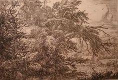 Jacob VAN Ruisdaël : Arbre coupé