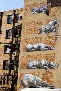 ROA New Mural In Johannesburg, South Africa StreetArtNews Street art Amazing Street Art, 3d Street Art, Street Art Graffiti, Amazing Art, Banksy, Graffiti Artwork, Graffiti Artists, Graffiti Lettering, South African Art