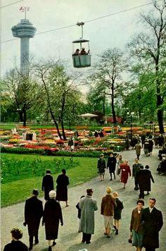 Rotterdam - Euromast, 1960