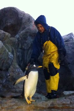 Playing with the Penguins.