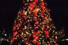 I love all things Christmas. #Xmas #Christmas #ChristmasEve #MerryChristmas