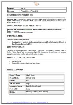 mba information technology resume format page 2