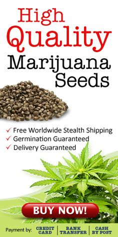 marijuana-seeds-free-worldwide-shipping-sidebarblog