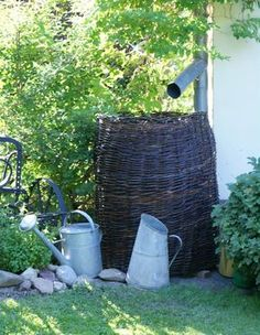 Water Plants, Garden Plants, Twig Crafts, Water Collection, Rainwater Harvesting, Rain Barrel, Garden Cottage, Backyard Projects, Permaculture