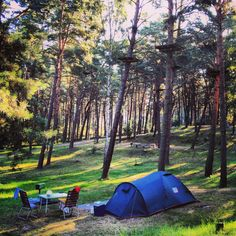 Poland, Sobieszewo. Green room at camping Orlinek. #trawerswpolske