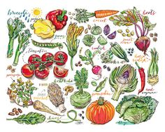 Garden vegetables print. Kitchen decor. Illustration. by LouPaper