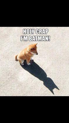 Little Batman puppy