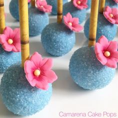 Cake Pops Rock Hill Sc