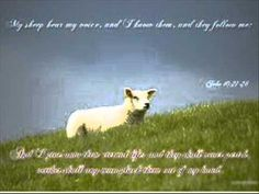 God's Sheep Hear His Voice ~ Part 1 - by Andrew Wommack - YouTube