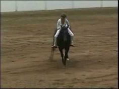 "Bareback riding WITHOUT reins in Quarter horse competition performed by Stacy Westfall.  Stacy Wizards Baby Doll aka ""Roxy"" give such a beautiful example of unity and trust. Stacy dedicated this performance to her Dad, who had passed on earlier that month."