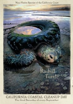 "coastal cleanup, images | Coastal Clean-up Day: ""RADIAL TURTLE"" Outdoor Advert by Goodby ..."
