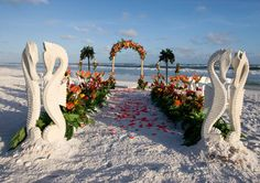 So much to look at! kn  Beautiful Beach Wedding Path in the sugar sand on Florida's Emerald Coast famed for Destin Beach Weddings.