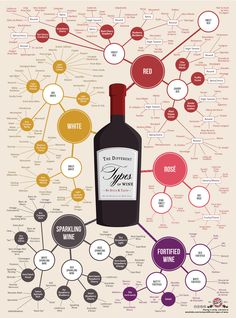 This infographic organizes almost 200 types of wine by taste so you can easily discover new wines based on your preferences!
