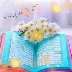 Flower Phone Wallpaper, Background Hd Wallpaper, Galaxy Wallpaper, Islamic Wallpaper Hd, Quran Wallpaper, Beautiful Love Pictures, Beautiful Gif, Ramadan Poster, Animated Love Images