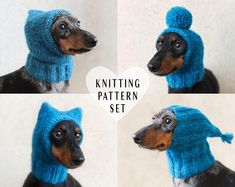 Toy knitting pattern for an elephant in a textured sweater inches tall) Small Dog Sweaters, Knitting Patterns, Crochet Patterns, Crochet Dog Sweater, Dog Crochet, Little Cotton Rabbits, Mini Dachshund, Daschund, Fancy Hats