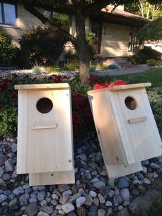 Screech Owl / Kestrel Nest Box, White Cedar (Two nest boxes) Outdoor Garden Rooms, Outdoor Gardens, Outdoor Living, Outdoor Decor, Bird Houses For Sale, Owl Box, Screech Owl, Worm Farm, White Cedar