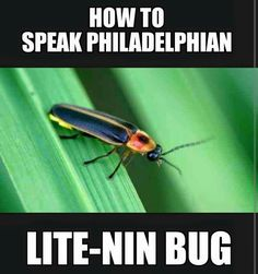 Image result for how to speak philadelphian lightening bugs
