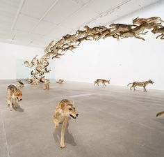 A Herd of 99 Lifelike Animals Drink From a Pool at QAGOMA