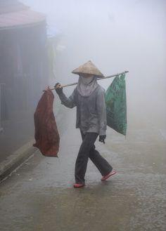 En la niebla, Sapa