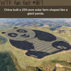 China built a solar farm shaped like a giant panda - WTF fun fact - Looks like Po from Kung Fu Panda