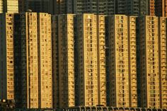 Hong Kong. Amazing HK! #hongkong #amazinghongkong Hong Kong, Amazing, Wood, Woodwind Instrument, Timber Wood, Trees