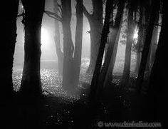 Shadowlands shadows - Google Search