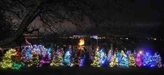 With its Christmas trees and free concerts, West Vancouver's Dundarave Festival of Lights is a great place to enjoy holiday festivities on the North Shore. Canada Holiday, Festival Lights, Holiday Festival, Great Places, Vancouver