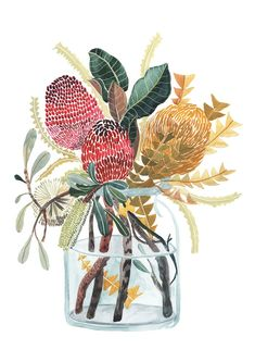 Mixed Banksia and Grandiflora Leaves Botanical Art, Botanical Illustration, Illustration Art, Art Illustrations, Australian Gifts, Australian Art, Watercolor Flowers, Watercolor Art, Australian Native Flowers