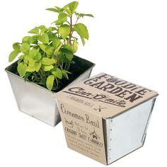 Odlingskit - Foodie Garden