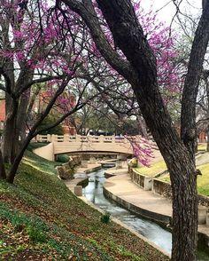 The Waco Creek footbridge at Baylor University.