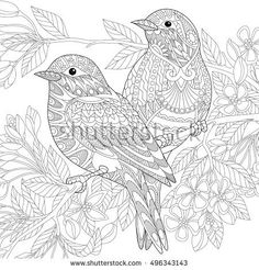 Stylized two sparrows sitting on blooming tree branch. Freehand sketch for adult anti stress coloring book page with doodle and zentangle elements.