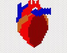 Human Heart Bead Pattern Pony Bead Patterns, Kandi Patterns, Beading Patterns Free, Alpha Patterns, Peyote Patterns, Cross Stitch Patterns, Peyote Beading, Beadwork, Beaded Banners