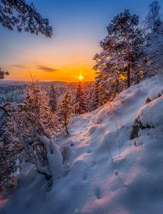 Morning Tracks II by Lauri Lohi - Photo 143108029 - 500px Finland