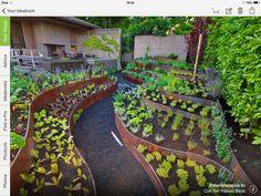 Modern Vegetable Garden In Backyard Plant Flower Stock