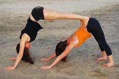 Descubren un mecanismo reversible que incrementa la elasticidad muscular / Noticias / SINC