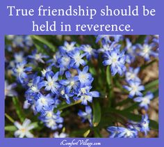 True friendship should be held in reverence.