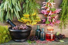 Tirei uma Carta no Jardim: A diferença entre óleo essencial e essência