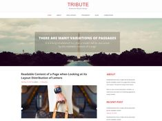 Tribute is a one-stop answer for wonderful and effective sites. An adaptable topic that can be utilized for a wide assortment of purposes, for example, individual blog, independent company site...