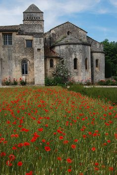 Monastery in St Remy de Provence  - We were there two weeks ago, but the field was planted with lavender!  Beautiful place and Van Gogh!