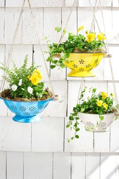 Creative DIY Garden Planters Hang spring flowers in brightly colored colanders for an unexpected and truly unique way to update your porch.Hang spring flowers in brightly colored colanders for an unexpected and truly unique way to update your porch. Unique Garden, Colorful Garden, Tropical Garden, Diy Hanging Planter, Hanging Basket, Mother's Day Diy, Garden Planters, Basket Planters, Planter Ideas