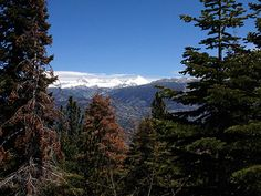Near Yosemite - free overnights for hikes PCT  http://www.edisonlake.com/blog1