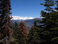 Near Yosemite - free overnights for hikes PCT  http://www.edisonlake.com/blog1